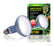 Daylight Basking Spot Lamp | Wide Beam Basking Bulb