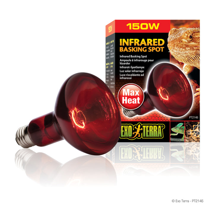Infrared Basking Spot Bulb | Night Time Heat Bulb