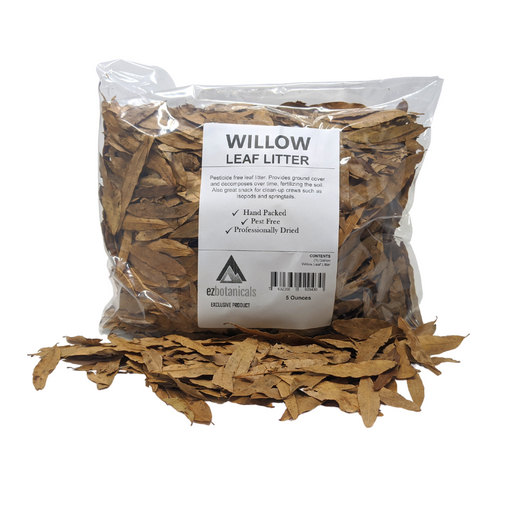 Willow Oak Leaf Litter