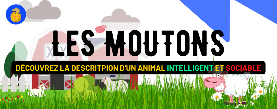 Le Mouton : Intelligence, Sociabilité, Habitat, Reproduction et Description