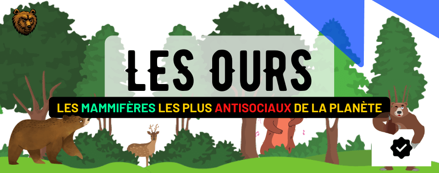 Les Ours : Habitat, Description, Comportement, Alimentation et Prédateurs !