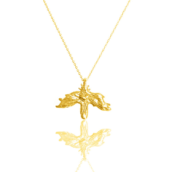 ISOLT Necklace