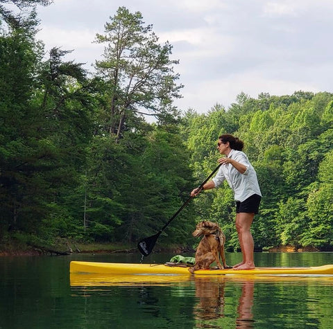 Glide paddle board SUP pup fitness