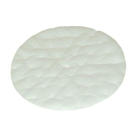 ProTeam Vacuum 101220 High Filtration Discs for Dome Filter (2 pk.)