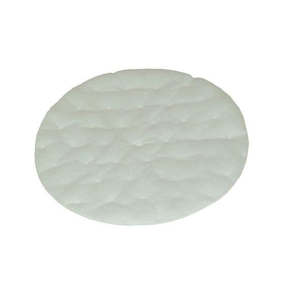 ProTeam Vacuum 102761 High Filtration Discs for Dome Filter, Fits Canisters, TailVac (2 pk.)