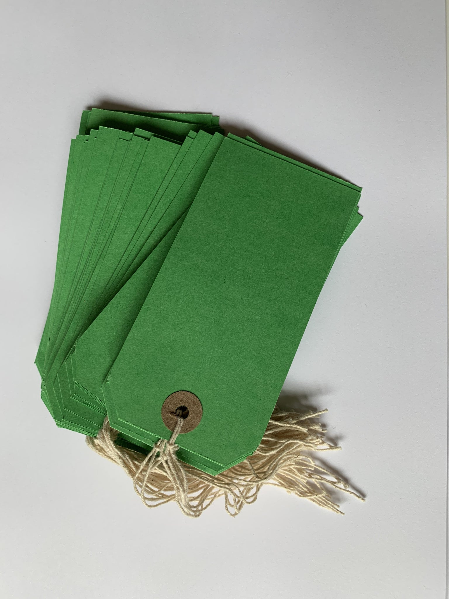 Box of 1000 Green Strung Tags 120mm x 60mm