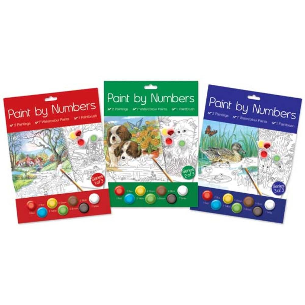 Box of 12 Paint by Numbers Senior Sets