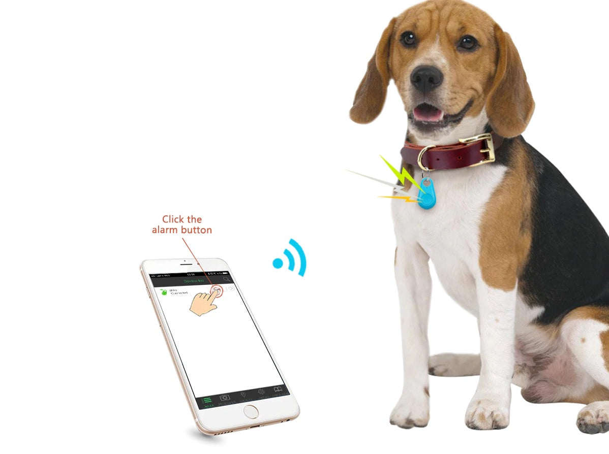 Rastreador Localizador Anti-perda Via Bluetooth- Cães E Gatos