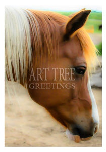 Horse Face Profile: Photo Paper Greeting Card Blank