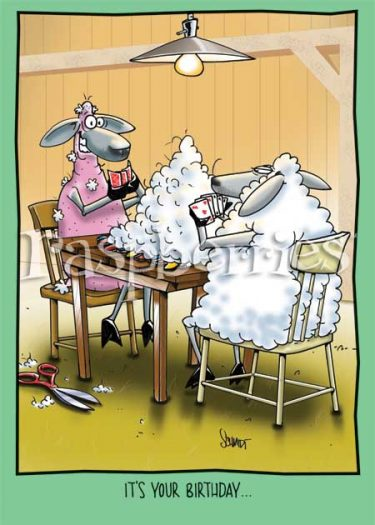Sheep Playing Poker: Paper Funny Birthday Card