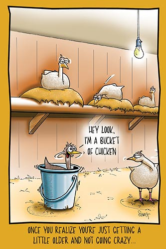 Chicken in a Bucket | Hilarious Birthday Card