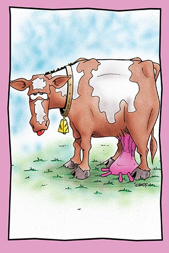 Cow with Udder on the Ground | Funny Encouragement Card