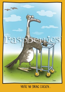 Old Geeser: Funny Goose with Walker Printed Birthday Card