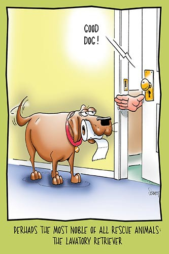 Lavatory Retriever | Hilarious Birthday Card