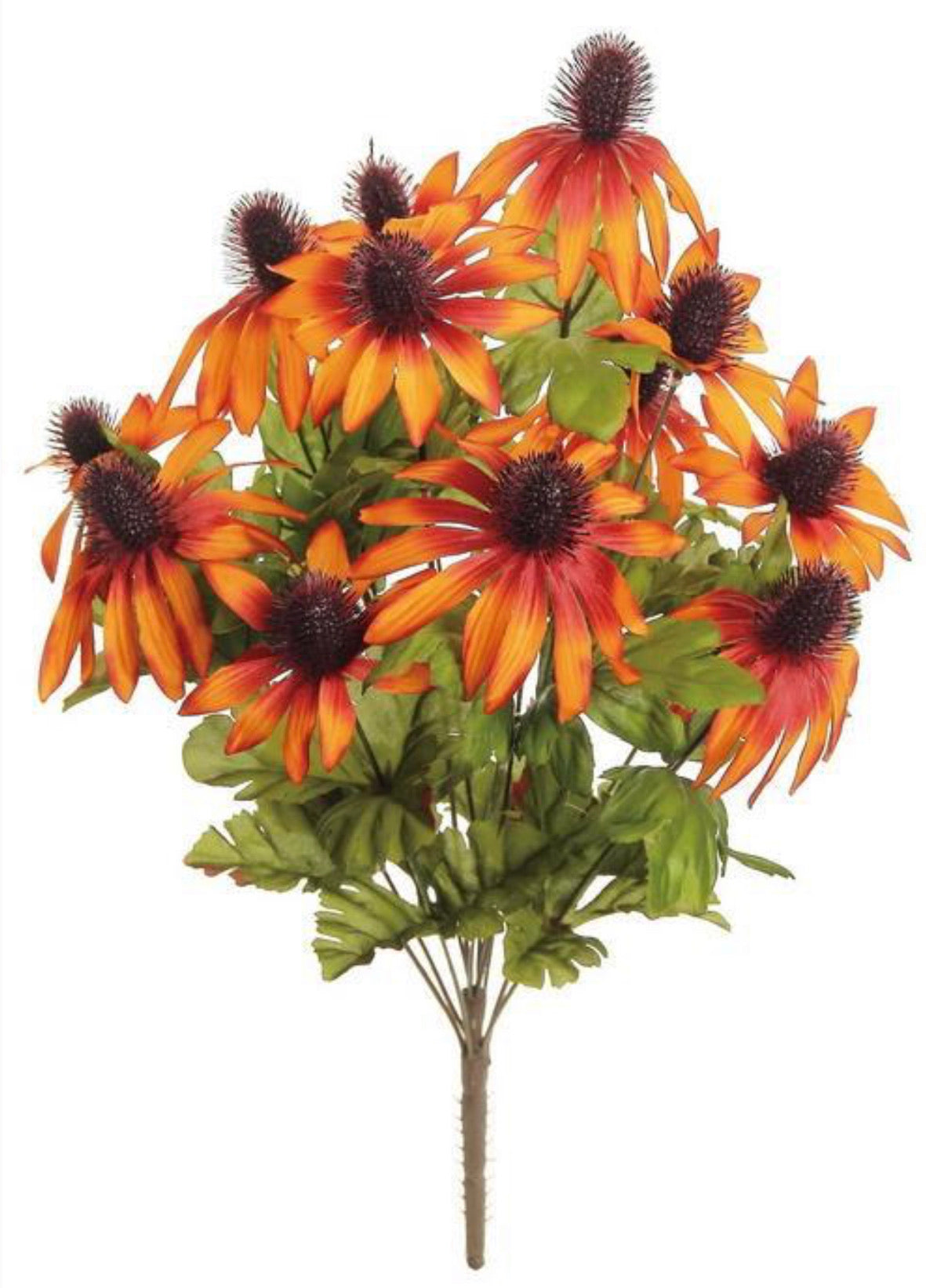 Rudbeckia bush, rust, plum