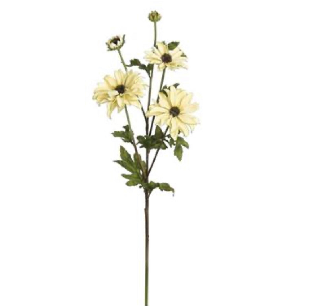 Daisy Mum spray - cream beige