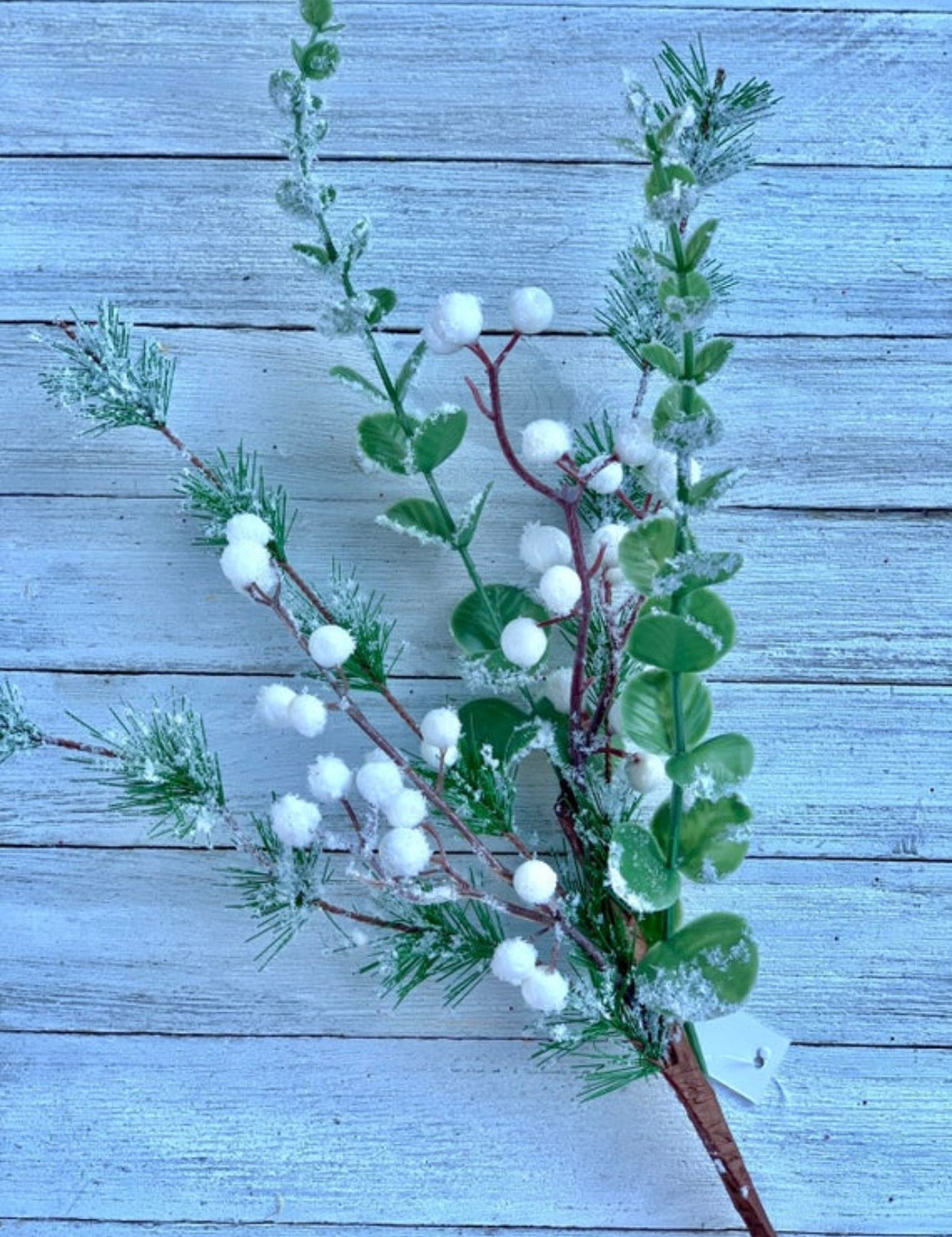 Pine with white berries