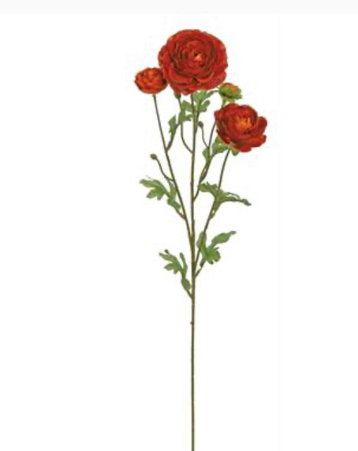 Ranunculus spray - dark orange