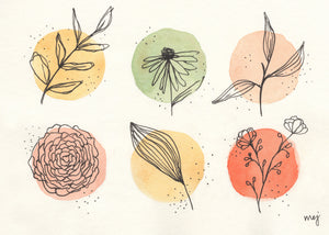 two rows of three warm peach, rust, yellow, and sage green watercolour circles with ink drawings of leaves and flowers over each one