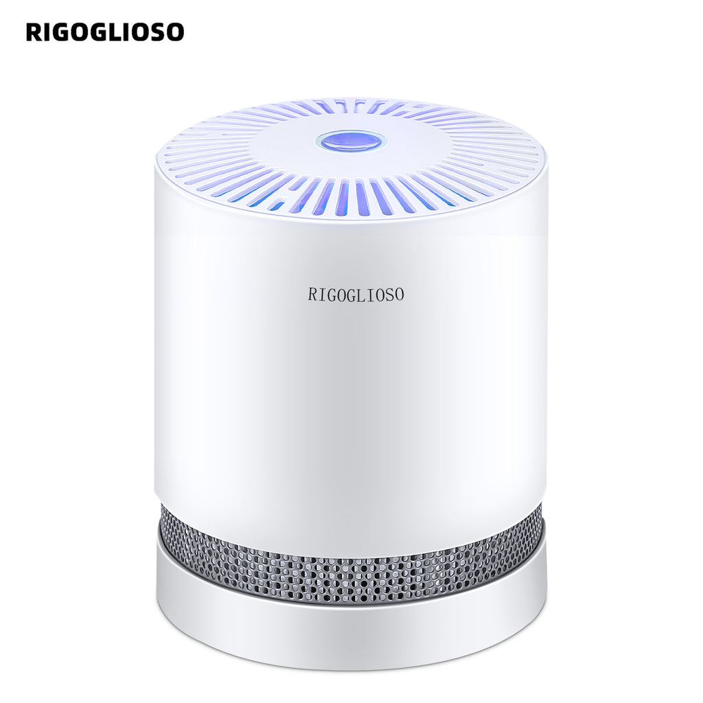RIGOGLIOSO Air Purifier For Home