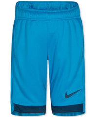 Nike Dry Trophy Shorts