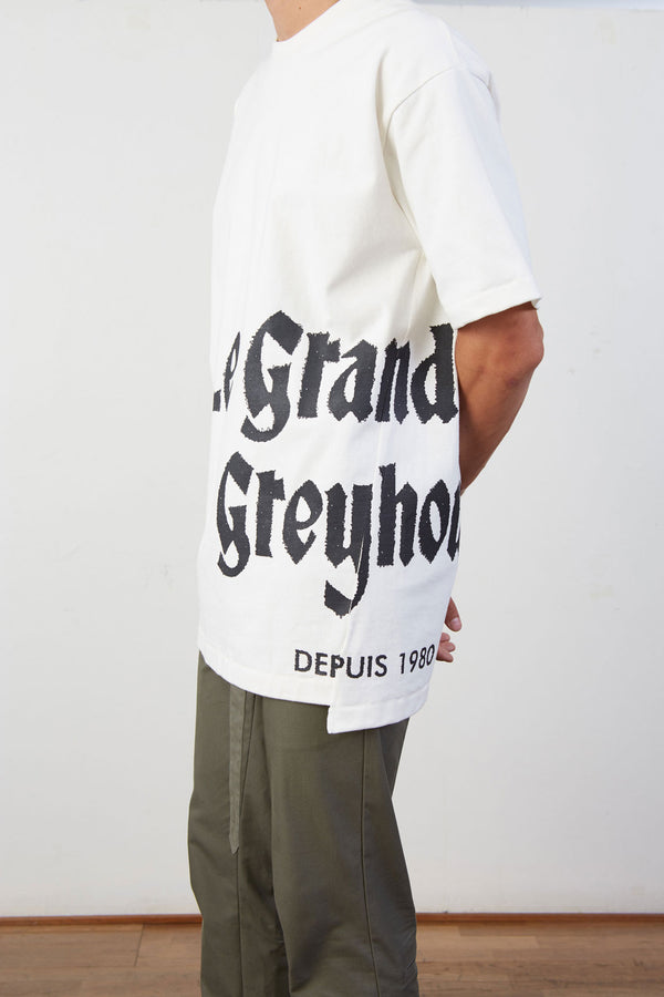 Le Grand Hotel De Greyhound Oversized T-shirt