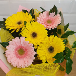 Florist Choice Gerbera bouquet - Gold Coast City Florist