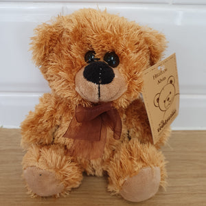 Small Teddy bear - Gold Coast City Florist
