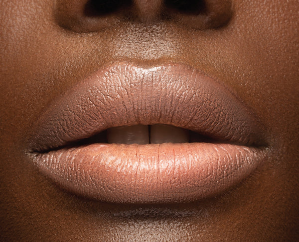 Perfect Nude Pout Holiday Duo