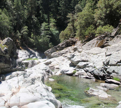 Gold Mining Claim in Sierra County California