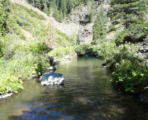 Gold Mining Claim for Sale Remote Sierra County 20 Acres