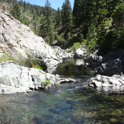 Gold Mining Claim 20 Acres