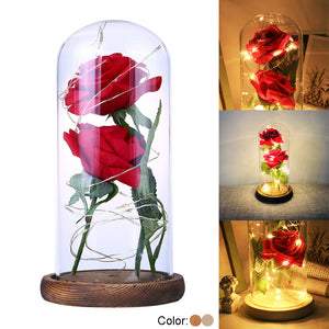 Beauty And The Beast Rose Rose In LED Glass Dome Forever Rose Red Rose