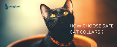 How to choose a Safe Cat Collar ?