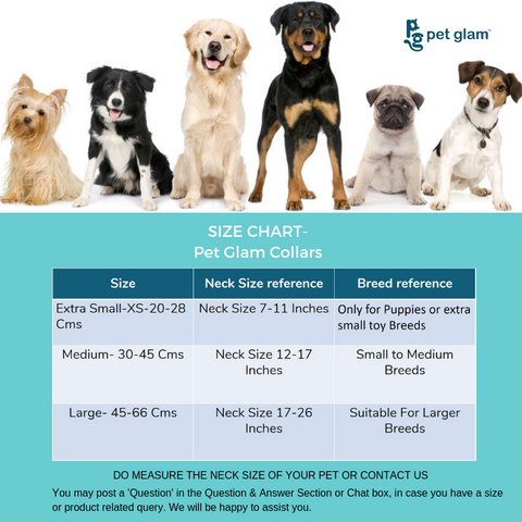 Dog Collar size Chart how to measure the dog collar size-best dog collars in india collars for small dogs collars for beagles collars for shih tzu online pet shop india