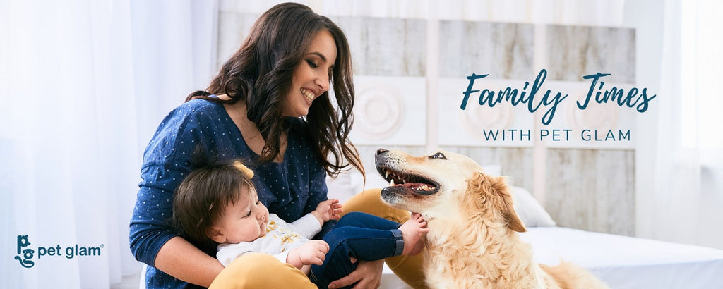 familytimeswithpetglam contest lockdown pets pet safety during covid19 how care for dogs and cats during covid19 pet quarantine