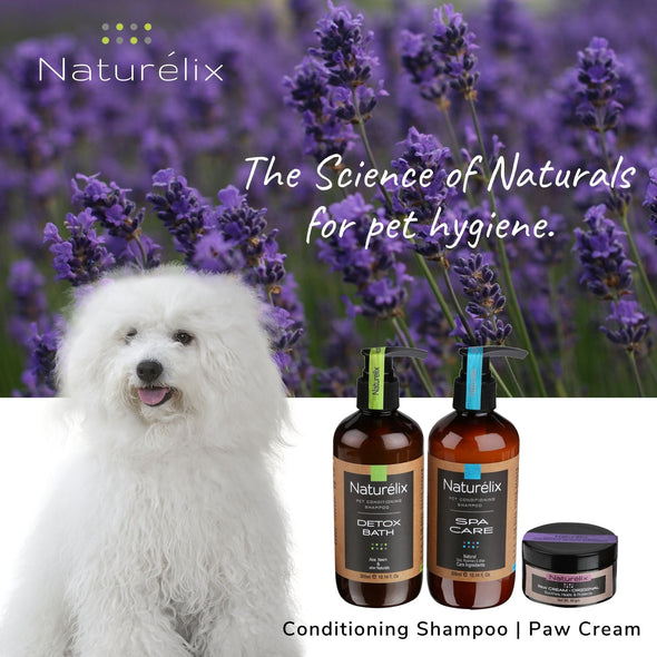 Best Dog Shampoo for labrador in india- best shampoo for puppies-natural dog shampoo-which dog shampoo is best for hair fall control-anti tick and flea dog shampoo onlin-free delivery of pet supplies.
