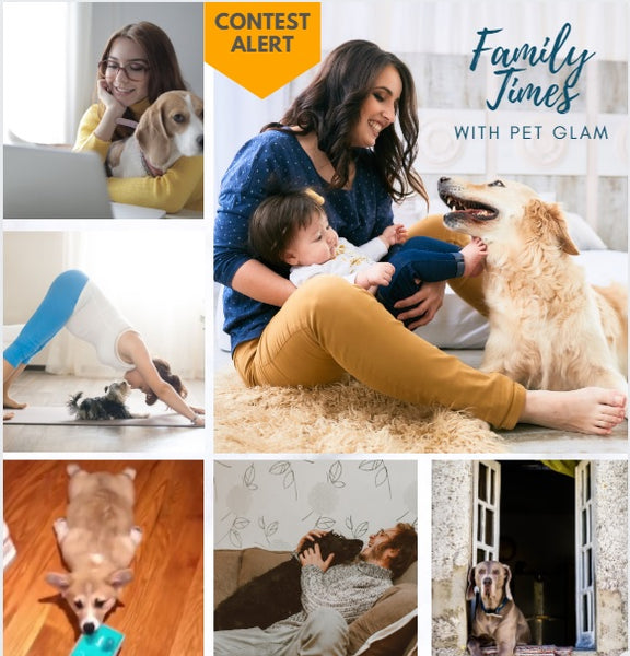 family times with pet glam contest-pet glam contest- pet accessories online best pet brand in india