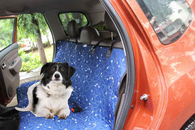 car seat protector for dog travel-car seat cover for pet dog cat travel-Travelling with pets tips-how to take my dog in a train+bus+car