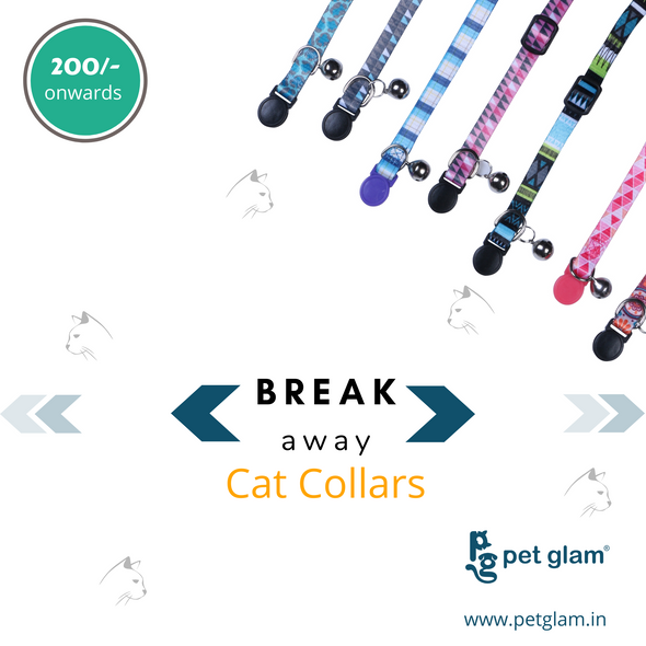 cat collars cat neck belt cat collars with bell cat tracker kitten collars cat neck bell cat neck collar persian cat neck belt cat collar belt cat belt with bell cat collars online cat neck band kitten neck belt breakaway cat collars cat calming collar kitten collar with bell cute cat collars best cat collar cat bow tie collar fancy cat collars safe cat collars cat collar and leash persian cat collar designer cat collars cat collars amazon kitty collars