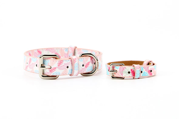 Daisy Fresh-Love Bands-Matching Collars for Pets & Wrist Bands for Humans