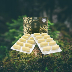 Hempura White Chocolates 500mg