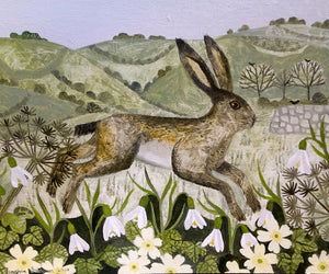 Hare and Hillside