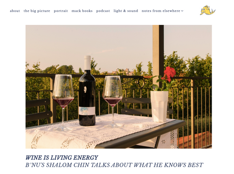 Wine is Living Energy- interview with Shalom Chin by Mackerel