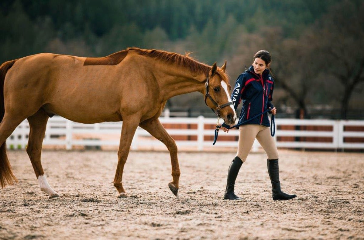 Rider in Ariat Horse Riding Boots