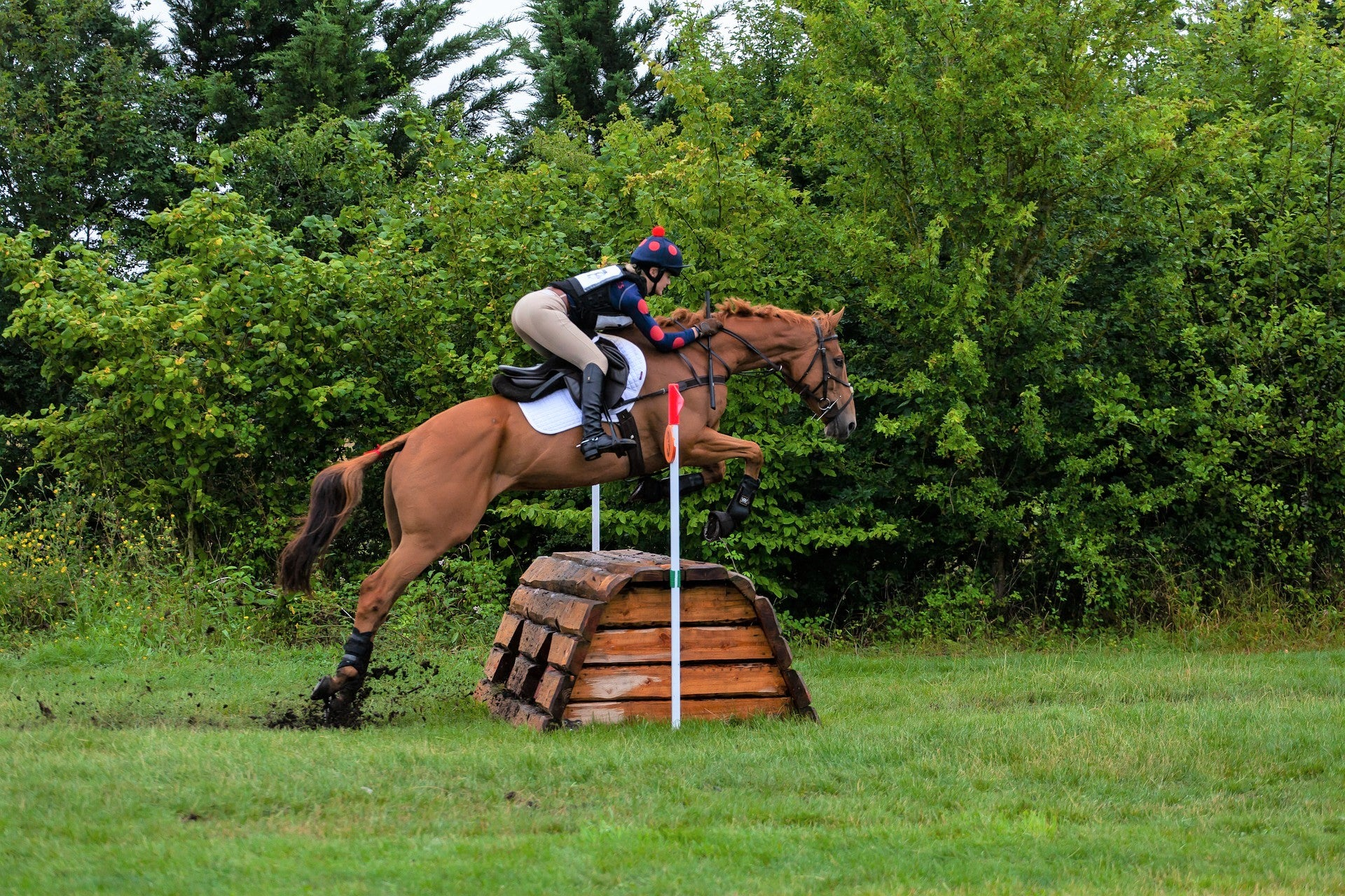 rider wearing horse-riding vest while jumping horse