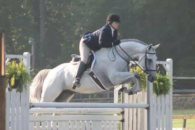 Big grey hunter going over an oxer