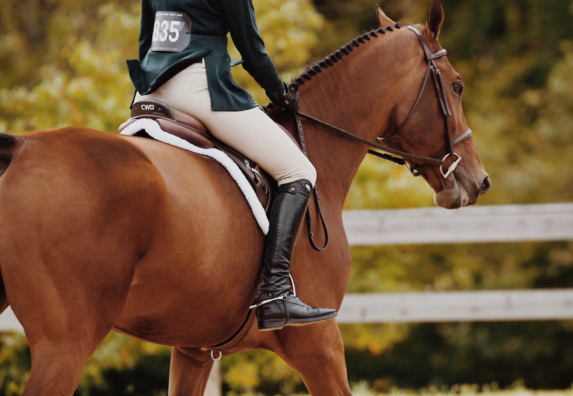 No Stirrup November