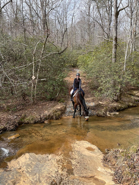 Trail riding is good for horses' brains