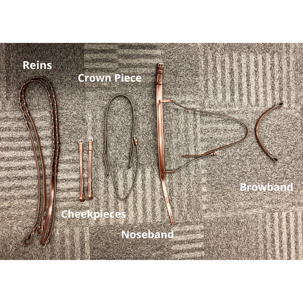 Parts of an english bridle